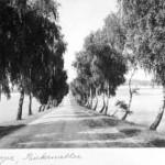 Nahrendorfer Strasse