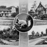 """Grusskarte aus dem Jahre 1961. 1. Augustenhof (Martens) 2. Alte Schule (jetziger Kindergarten) 3. Hühnengrab im Schieringen 4. Dorfstrasse """"Lütt Hamborg"""""""