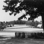 Blick von Waldesruh auf die Uhlenschänke und links im Bild ein Steingrab.